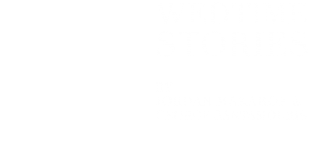 Wedtime Stories